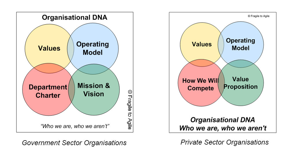 Organisational DNA (updated)
